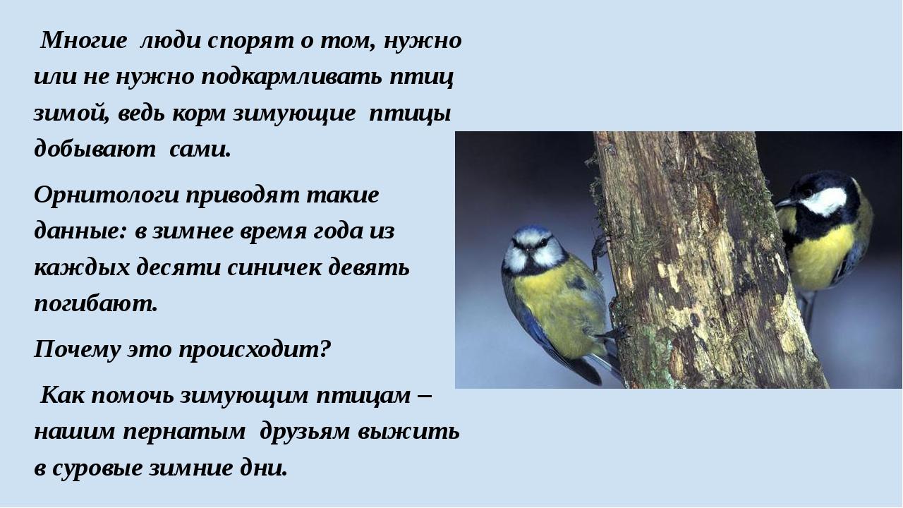 Многие люди спорят о том, нужно или не нужно подкармливать птиц зимой, ведь...