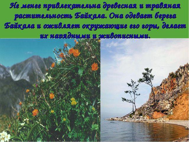 Не менее привлекательна древесная и травяная растительность Байкала. Она одев...