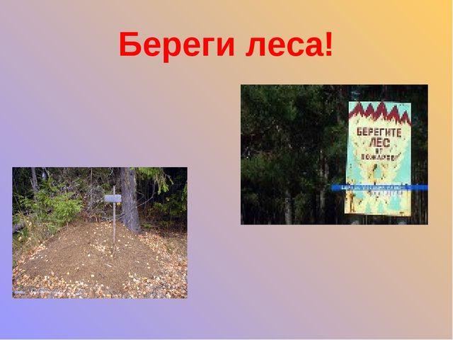 Береги леса!