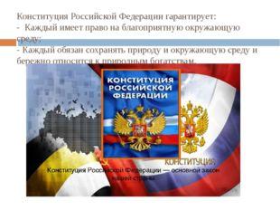 Конституция Российской Федерации гарантирует: - Каждый имеет право на благоп
