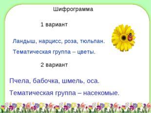 D:\Школа\фоны\shablon3.jpg Шифрограмма 1 вариант Ландыш, нарцисс, роза, тюльп