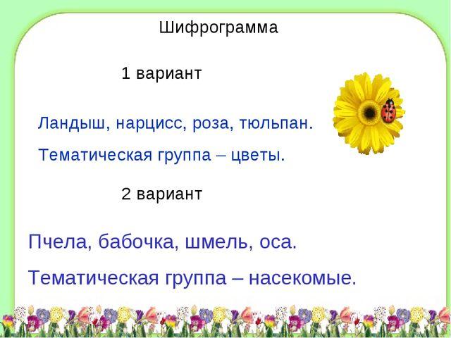D:\Школа\фоны\shablon3.jpg Шифрограмма 1 вариант Ландыш, нарцисс, роза, тюльп...