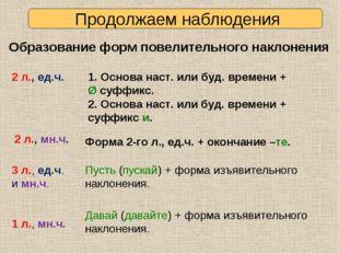 Продолжаем наблюдения Образование форм повелительного наклонения 2 л., ед.ч.
