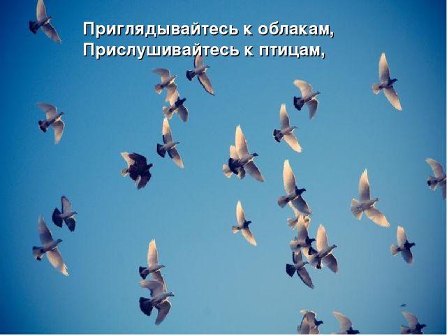 Приглядывайтесь к облакам, Прислушивайтесь к птицам,
