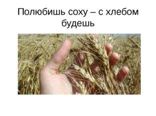 Полюбишь соху – с хлебом будешь Пословица