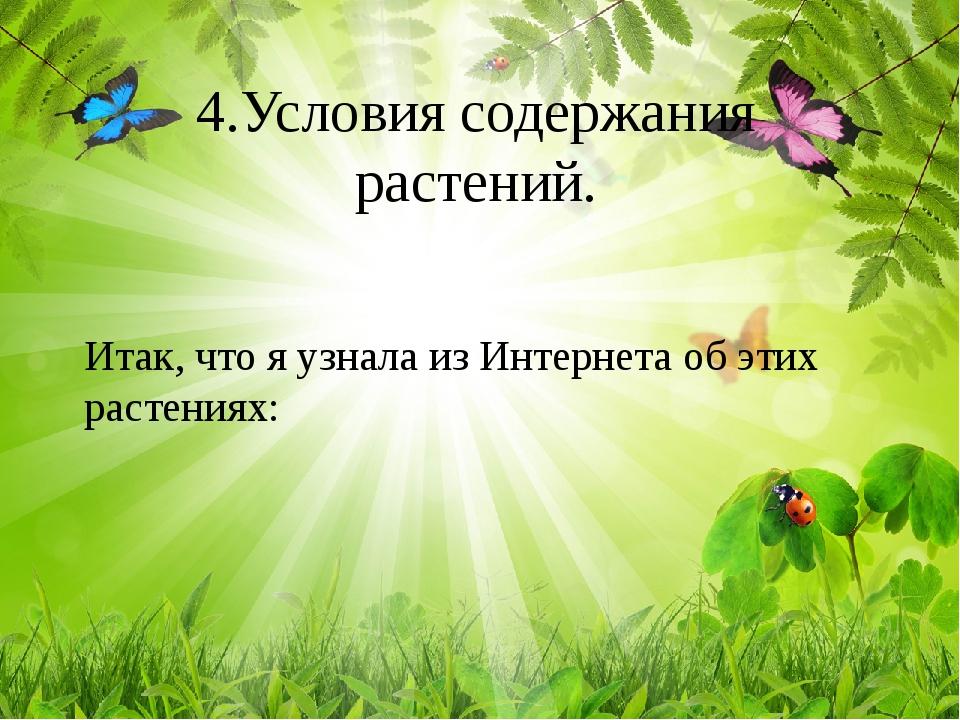 Студия дизайна интерьера и ремонта квартир в Калининграде