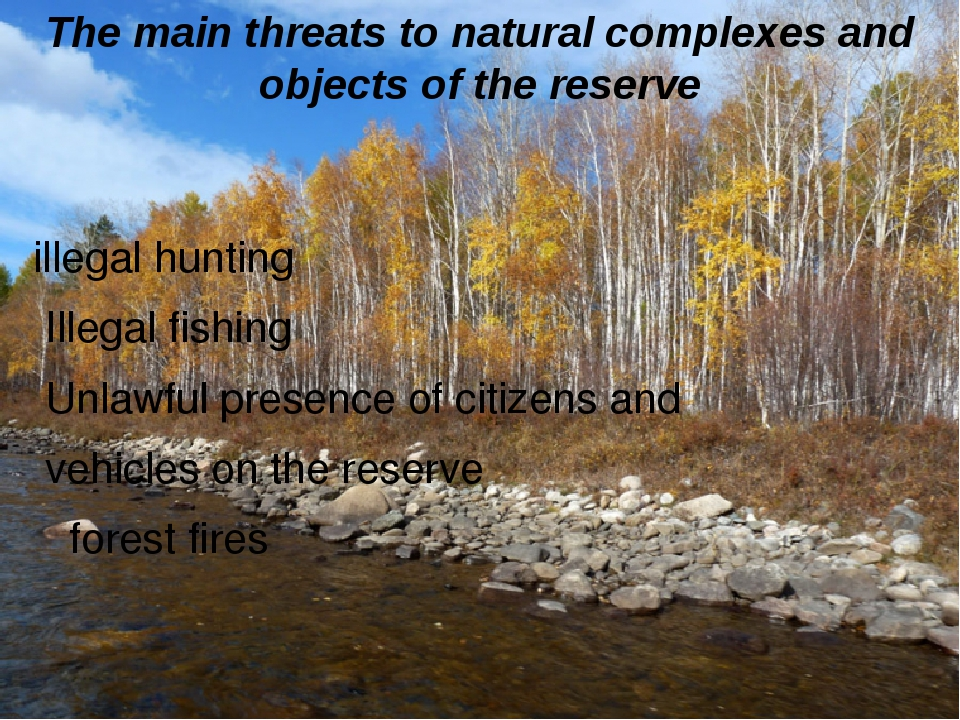 The main threats to natural complexes and objects of the reserve illegal hunt...