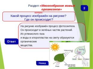 На рисунке изображён процесс фотосинтеза. Он происходит в зелёных частях раст