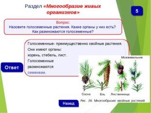 Голосеменные- преимущественно хвойные растения. Они имеют органы: корень, сте