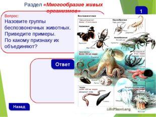 Раздел «Многообразие живых организмов» Вопрос: Назовите группы беспозвоночных