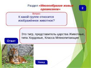 Это тигр, представитель царства Животные, типа Хордовые, Класса Млекопитающие