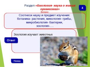 Зоология изучает животных Раздел «Биология- наука о живых организмах» Вопрос: