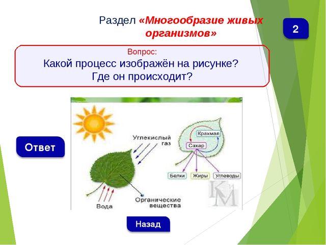Раздел «Многообразие живых организмов» Вопрос: Какой процесс изображён на рис...