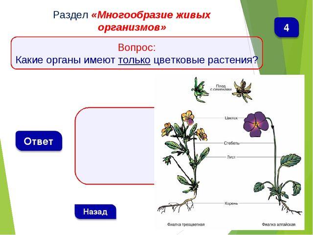 Раздел «Многообразие живых организмов» Вопрос: Какие органы имеют только цве...
