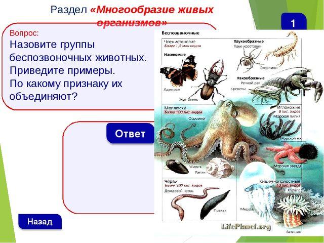 Раздел «Многообразие живых организмов» Вопрос: Назовите группы беспозвоночных...