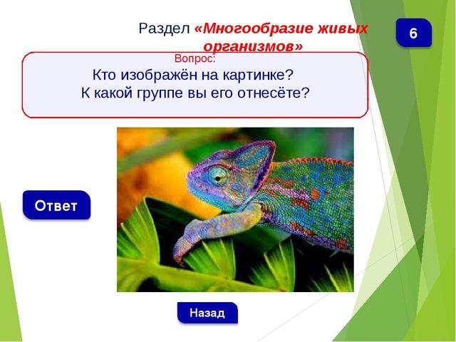 Раздел «Многообразие живых организмов» Вопрос: Кто изображён на картинке? К к...