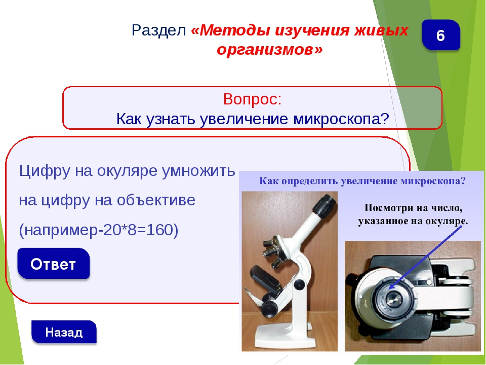 Цифру на окуляре умножить на цифру на объективе (например-20*8=160) Раздел «...
