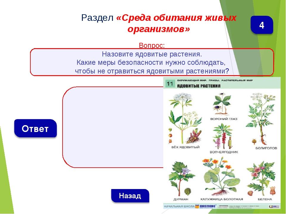 Раздел «Среда обитания живых организмов» Вопрос: Назовите ядовитые растения....