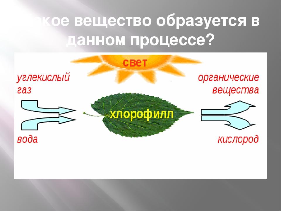 Какое вещество образуется в данном процессе?