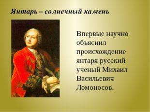 Впервые научно объяснил происхождение янтаря русский ученый Михаил Васильевич