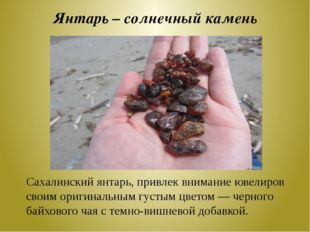 Янтарь – солнечный камень Сахалинский янтарь, привлек внимание ювелиров своим