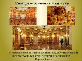 Янтарь – солнечный камень Музейная жизнь Янтарной комнаты вызывает неизменный
