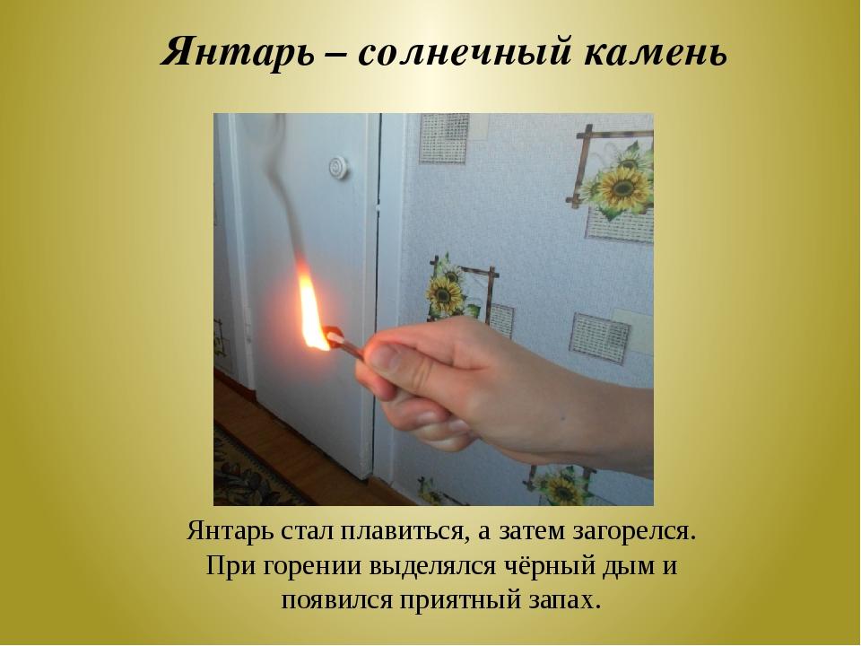 Янтарь – солнечный камень Янтарь стал плавиться, а затем загорелся. При горен...