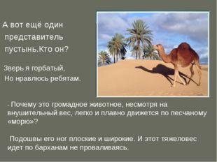 А вот ещё один представитель пустынь.Кто он? Зверь я горбатый, Но нравлюсь ре