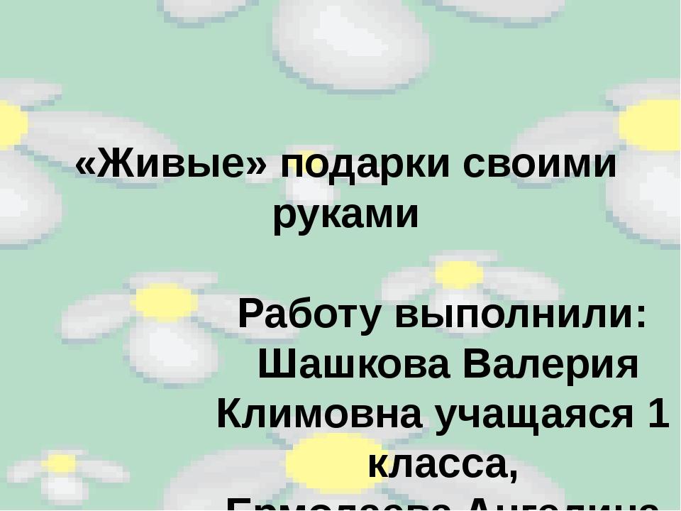 «Живые» подарки своими руками Работу выполнили: Шашкова Валерия Климовна учащ...
