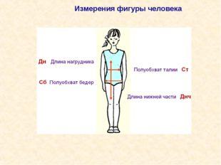 Измерения фигуры человека