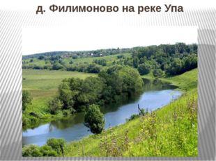 д. Филимоново на реке Упа