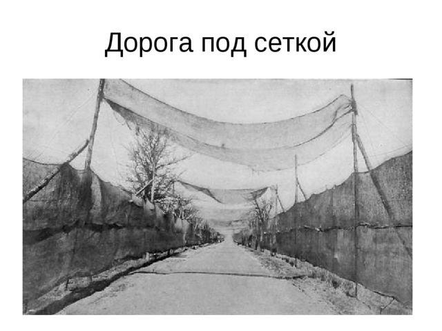 Дорога под сеткой