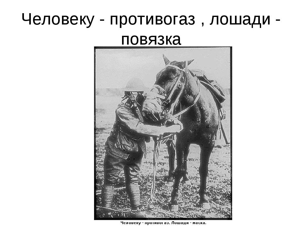 Человеку - противогаз , лошади - повязка
