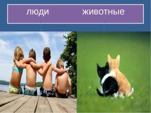 люди животные