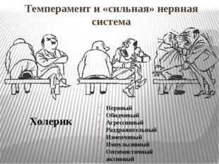 Темперамент и «сильная» нервная система Холерик Нервный Обидчивый Агрессивный