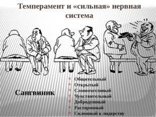 Темперамент и «сильная» нервная система Сангвиник Общительный Открытый Словоо