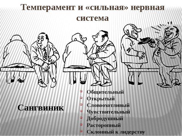 Темперамент и «сильная» нервная система Сангвиник Общительный Открытый Словоо...