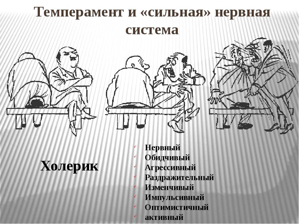 Темперамент и «сильная» нервная система Холерик Нервный Обидчивый Агрессивный...
