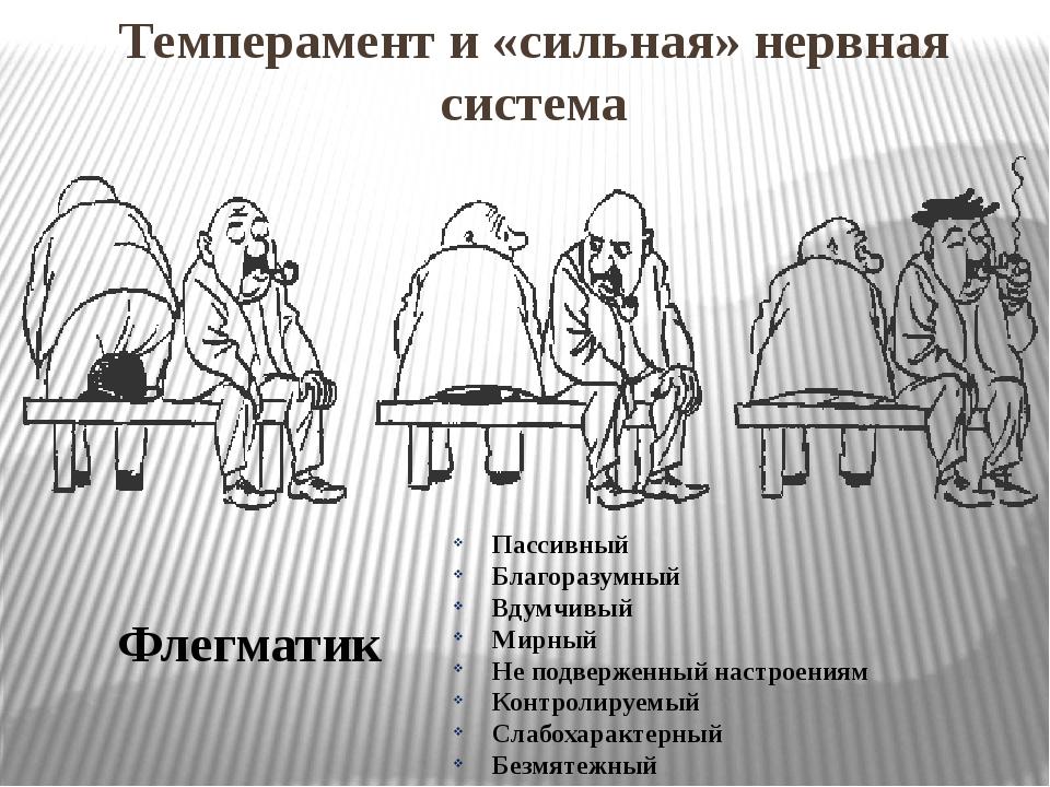 Темперамент и «сильная» нервная система Флегматик Пассивный Благоразумный Вду...