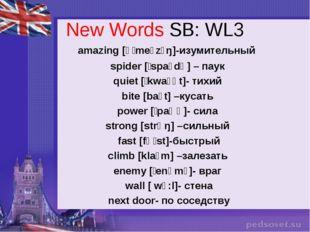 New Words SB: WL3 amazing [əˈmeɪzɪŋ]-изумительный spider [ˈspaɪdə] – паук qui
