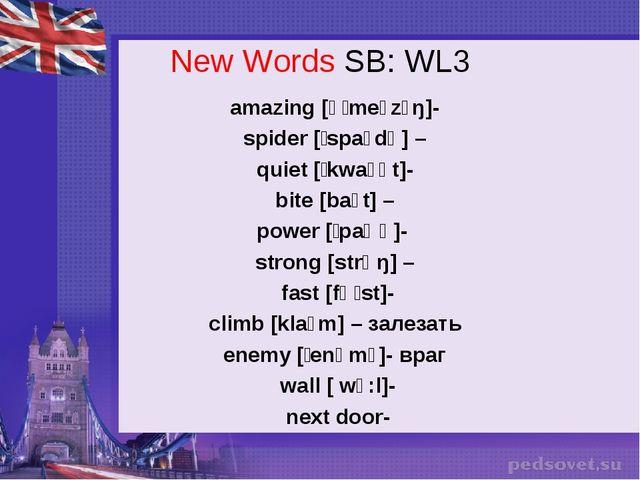 New Words SB: WL3 amazing [əˈmeɪzɪŋ]- spider [ˈspaɪdə] – quiet [ˈkwaɪət]- bit...