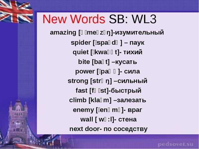 New Words SB: WL3 amazing [əˈmeɪzɪŋ]-изумительный spider [ˈspaɪdə] – паук qui...