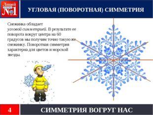 Снежинка обладает угловой симметрией. В результате ее поворота вокруг центра