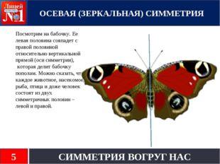 Посмотрим на бабочку. Ее левая половина совпадет с правой половиной относите