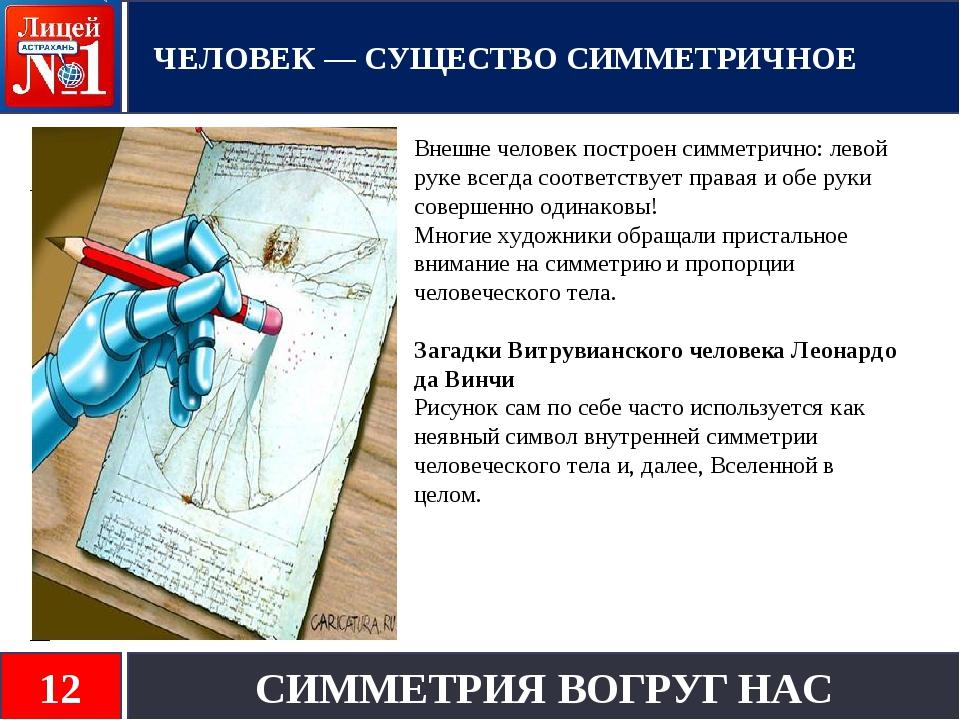 Внешне человек построен симметрично: левой руке всегда соответствует правая и...