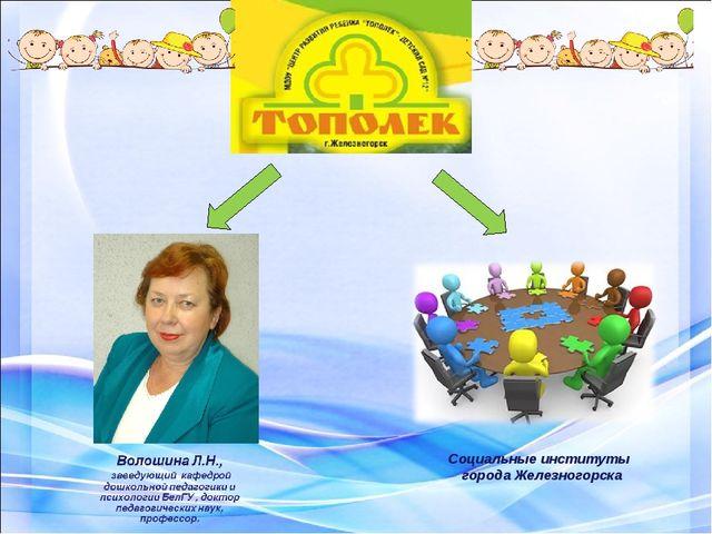 Социальные институты города Железногорска