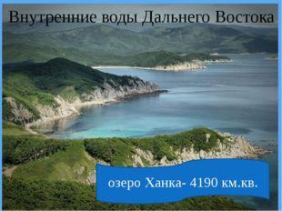 озера Пойменные Вулканические Тектонические озеро Ханка- 4190 км.кв. Внутрен
