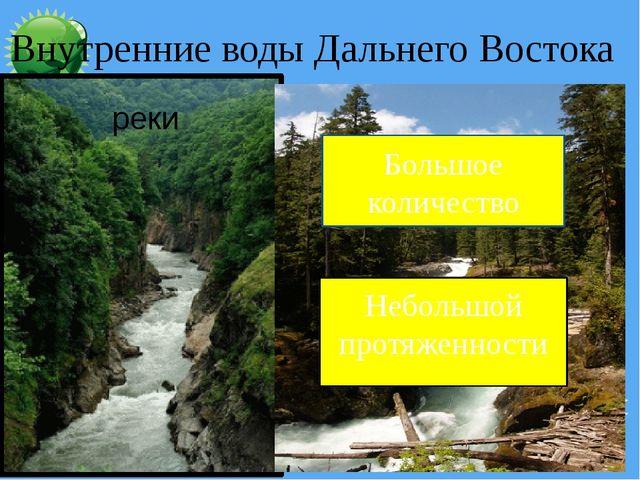 реки Небольшой протяженности Большое количество Внутренние воды Дальнего Вос...