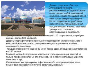 Дворец спорта им. Святого Александра Невского, расположенный в Старом Осколе,