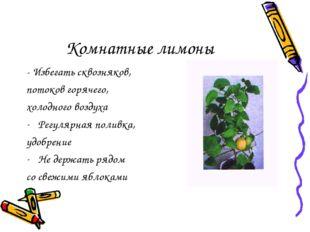 Комнатные лимоны - Избегать сквозняков, потоков горячего, холодного воздуха Р